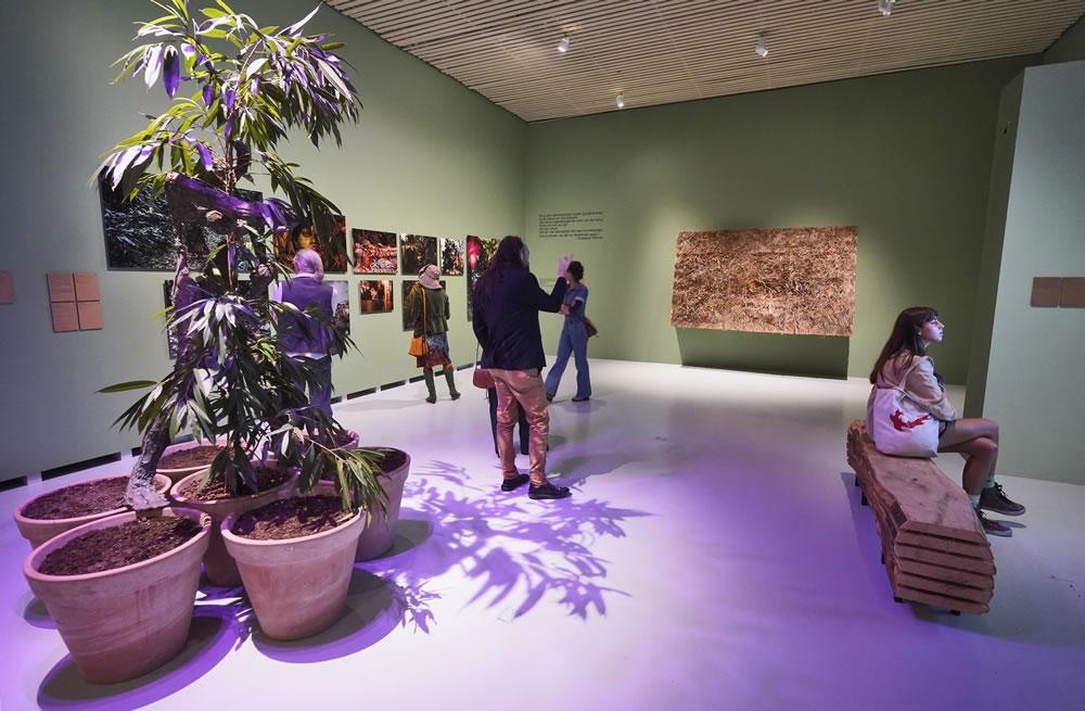 Expositie Rettet den Wald! - Museum Het Valkhof